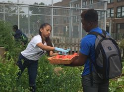 LEAF Students Bring in Fall Harvest